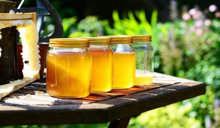 Seminar zur Bestimmung von argentinischen Honig